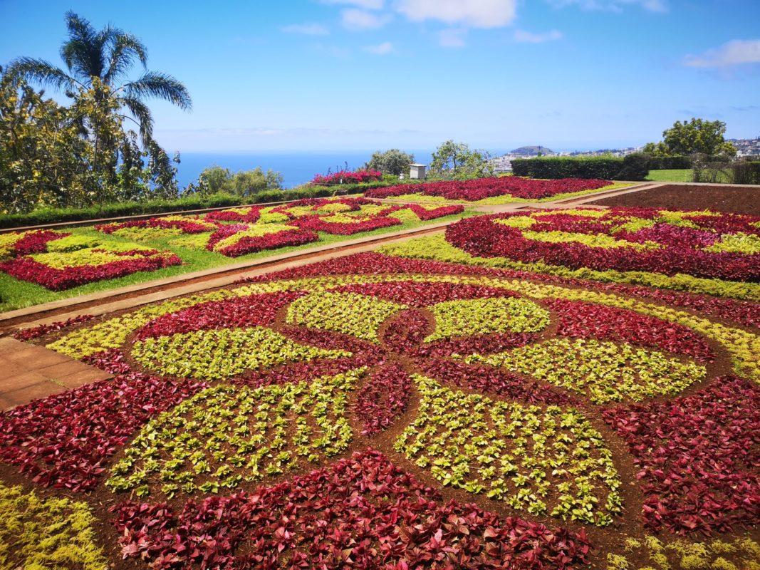 Bakancslistás látnivalók Madeirán Lindával, Botanikus Kert fűszőnyeg mandala