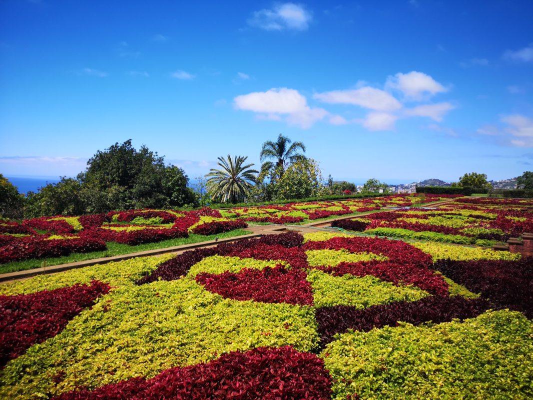 Bakancslistás látnivalók Madeirán Lindával, Botanikus Kert fűszőnyeg